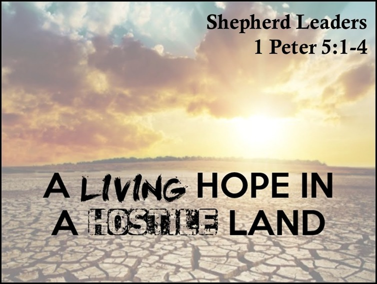 Shepherds of God are Living hope